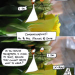 0106 Nuptial Notes